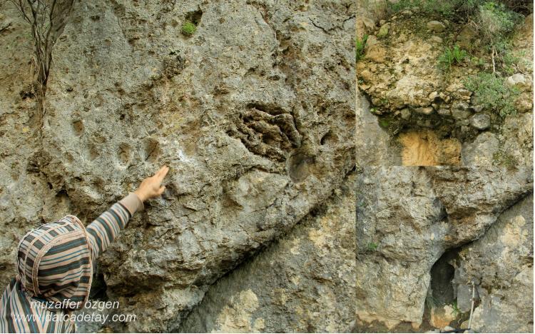 kaya oyukları