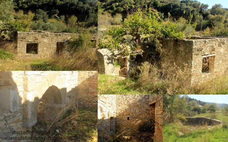 Eski taş ev