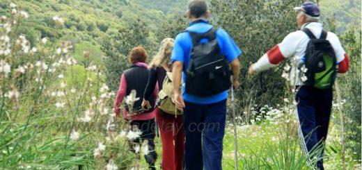 murdala'dan knidos'a doğa yürüyüşü