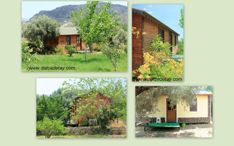 babil tatil köyü kütük evler
