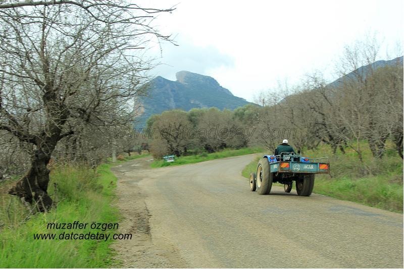 traktörlü köylü