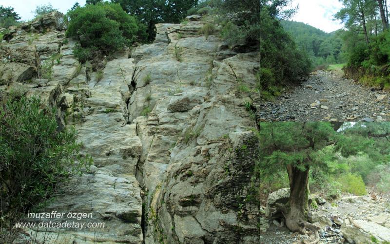 kanyon-fotosafari-2