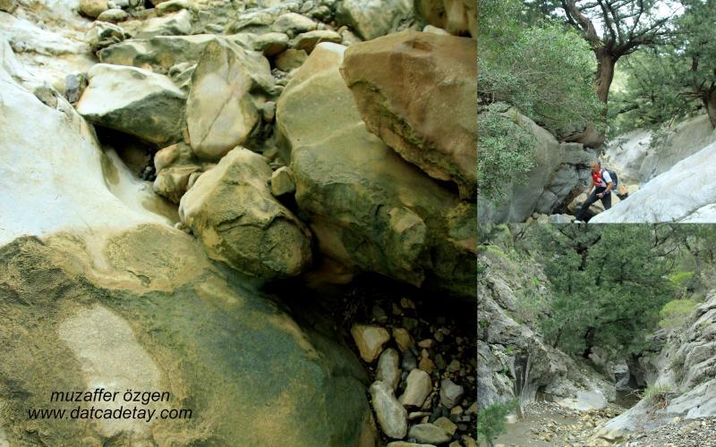 kanyon-fotosafari-22