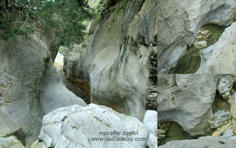 kanyon-fotosafari-24