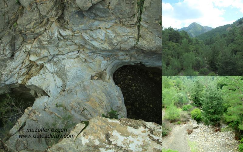 kanyon-fotosafari-4