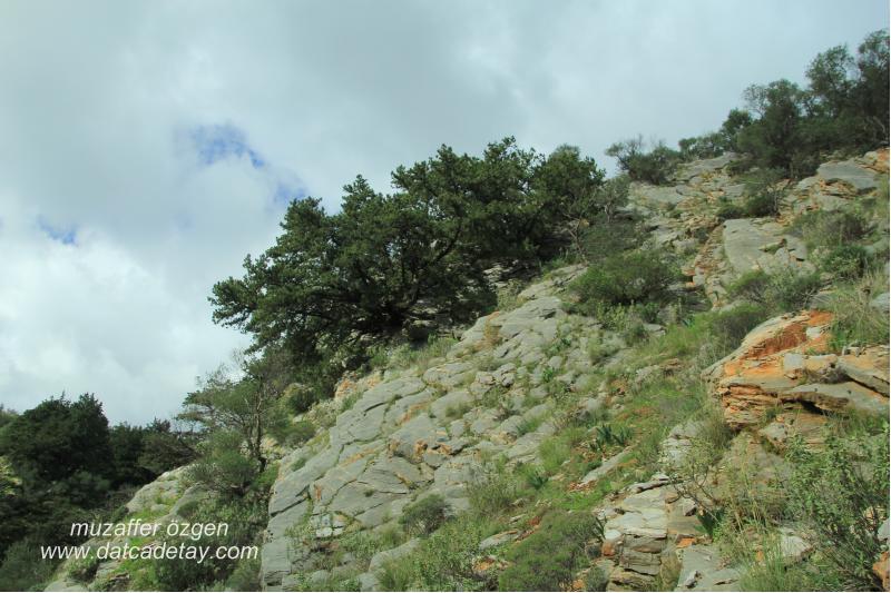 kanyon-fotosafari-42