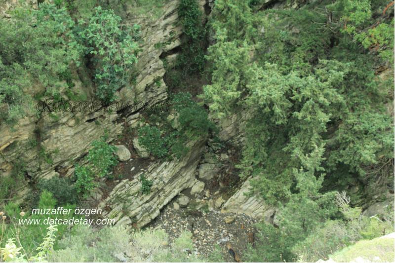 kanyon-fotosafari-44