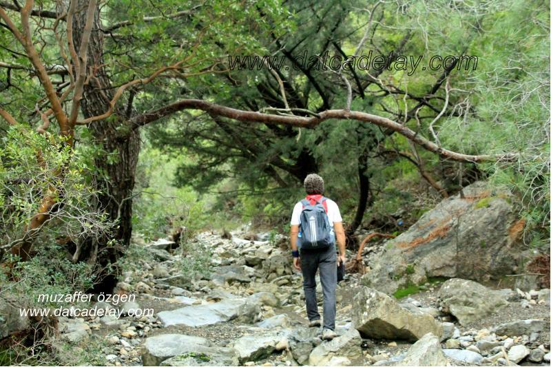 datça kanyon yürüyüşü