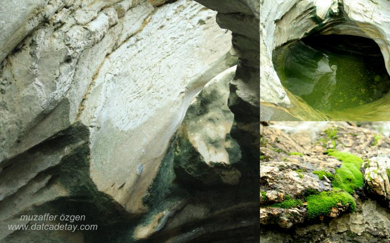 kanyon-fotosafari-6
