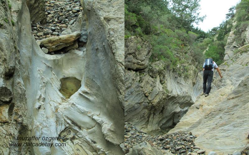 kanyon-fotosafari-7