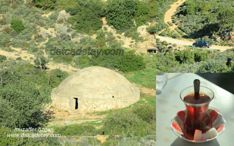baharda-foto-safari-12