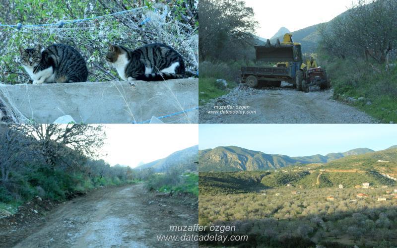 baharda-foto-safari-18