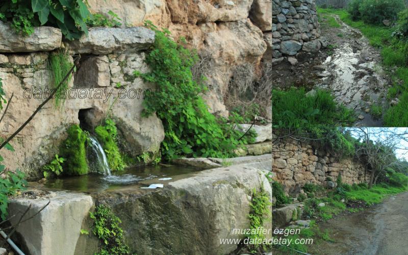 baharda-foto-safari-23