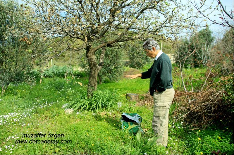 selma akad bahçesinde