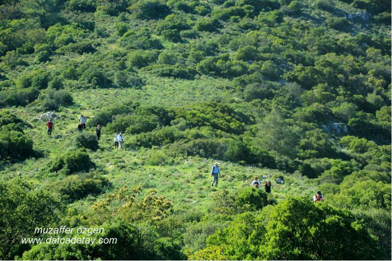 datça doğa yürüyüşleri