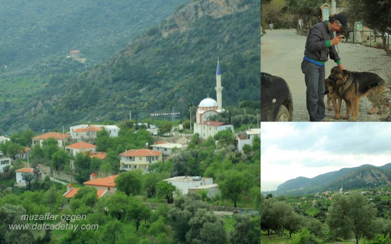 mesudiye manzarası