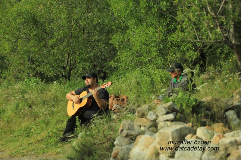 kırda gitar dinletisi