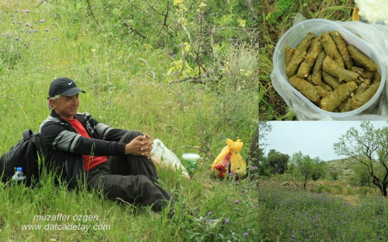 kırda piknik