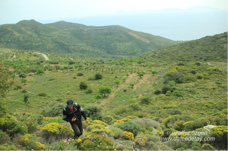 saranda dağına tırmanış
