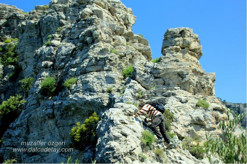sındı dağlarında kayalar