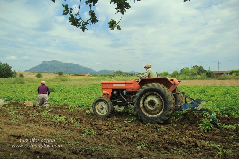 kızlanda çiftçiler