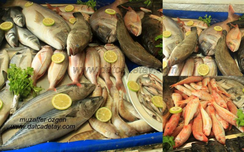 datça hüsnü'nün yeri balık lokantası