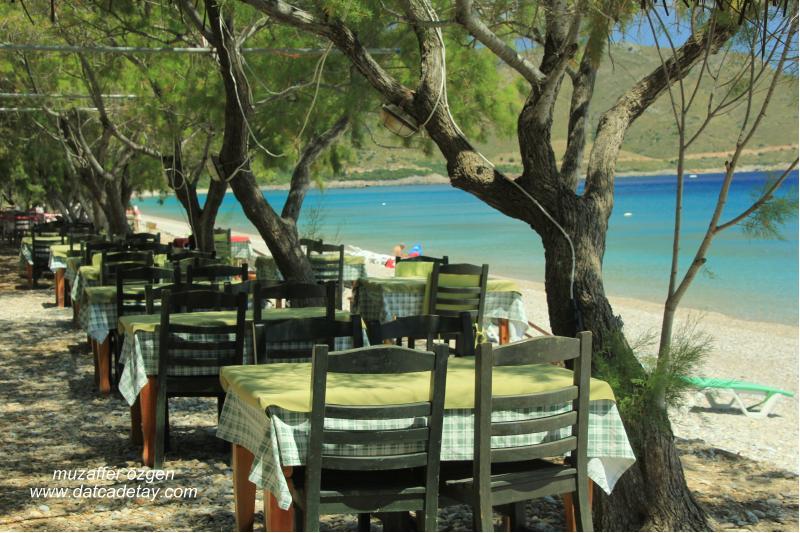 palamutbükü sahilinde lokantalar