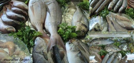 datça tuna restoran