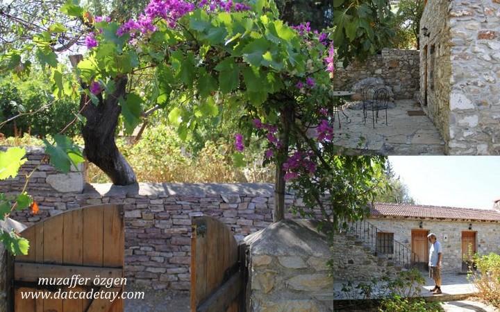 eski datça'da bir evin bahçesi