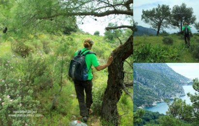 Ağaçlama – Domuzçukuru- Kızılbük Yürüyüşü