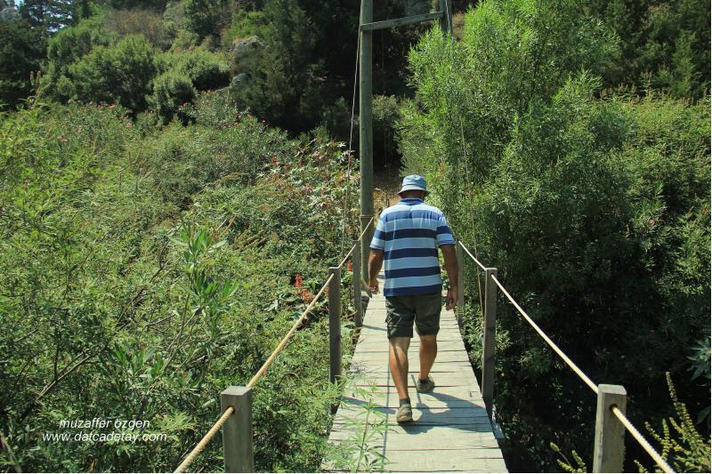 knidia çiftliğinde asma köprü