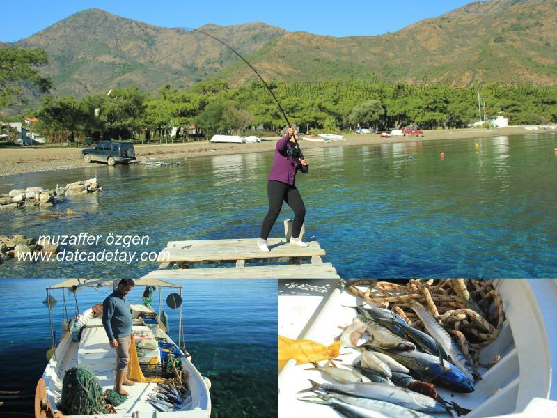 aktur balıkçılar