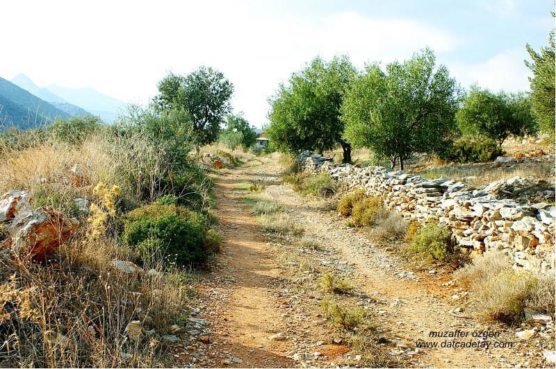 çeşmeköy antik köprü yolu