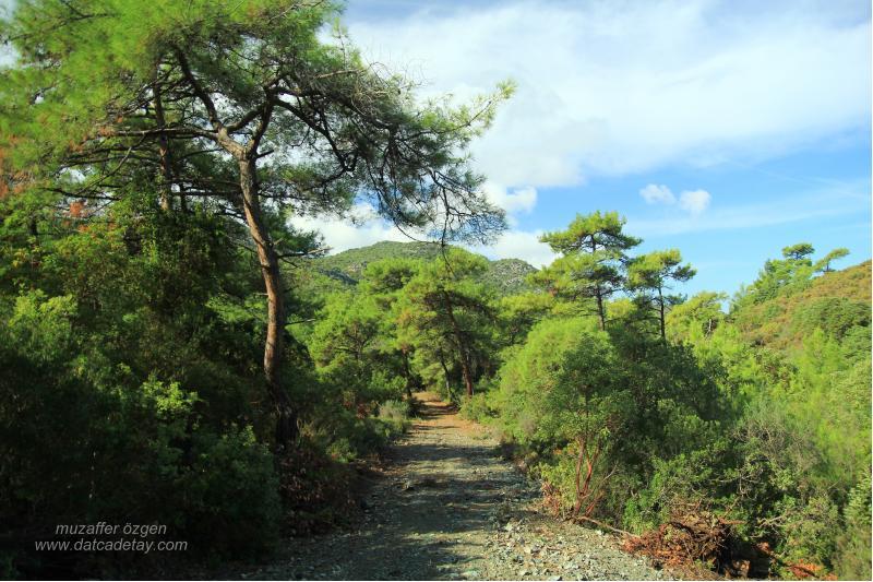 datcada-trekking-3