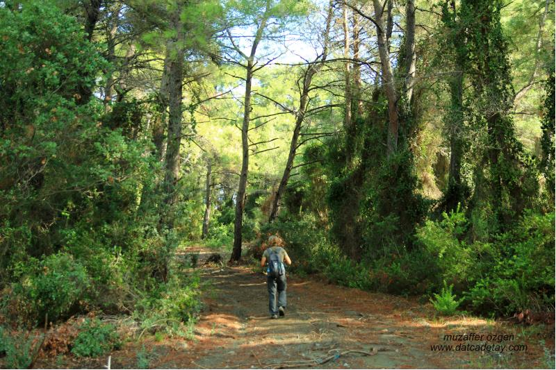 datcada-trekking-4