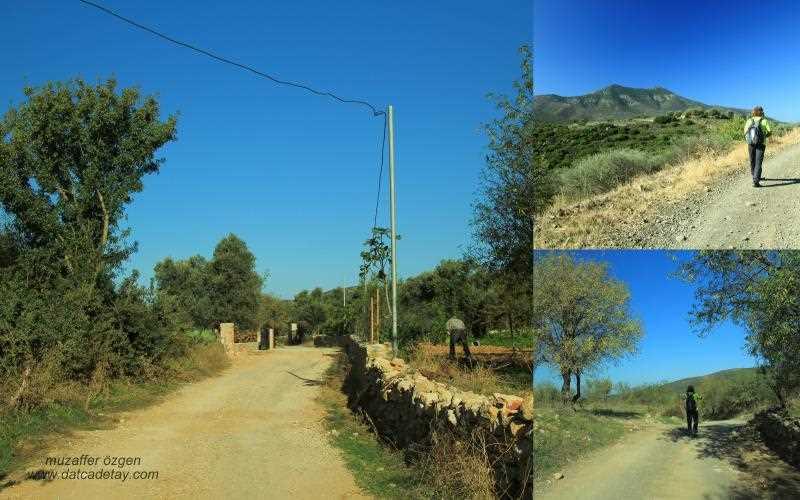 yazıköy köy yolu