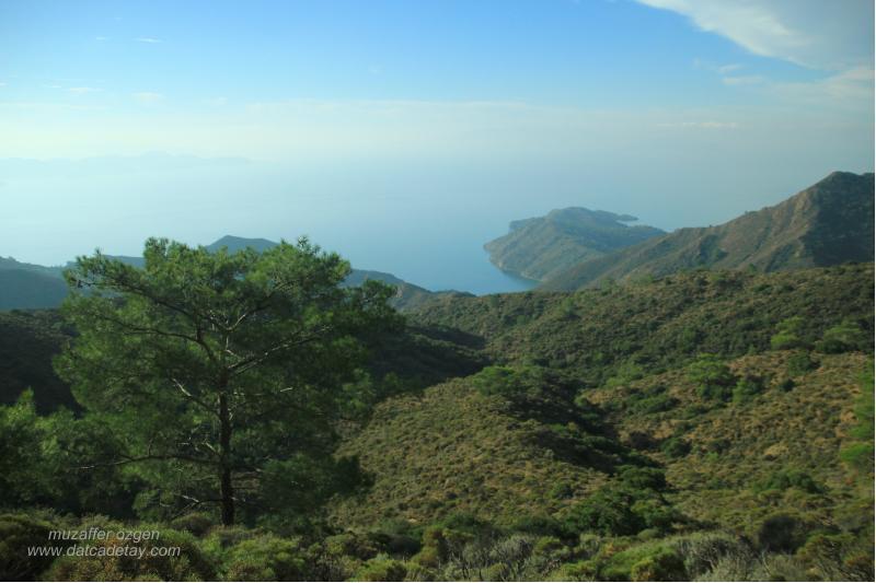 hurmalıbük vadilerinde