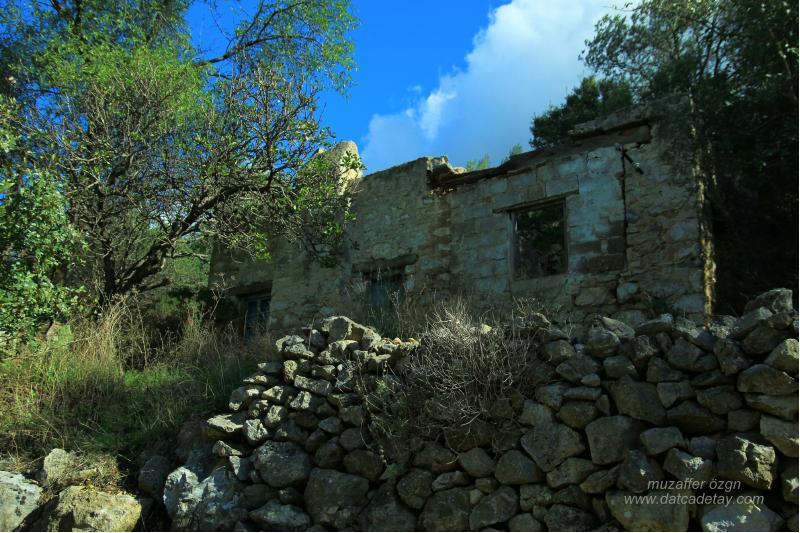zeytincik-evleri-28