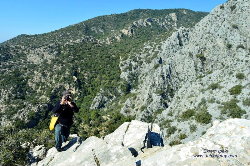 gönlüm dağlarda
