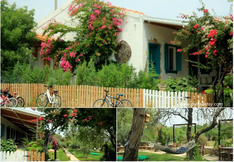 koop' suites bahçesi