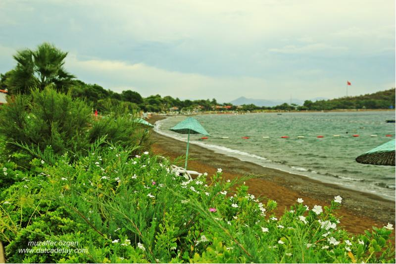 aktur plajı