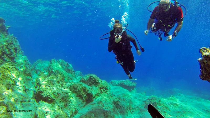 datça dalış sporları