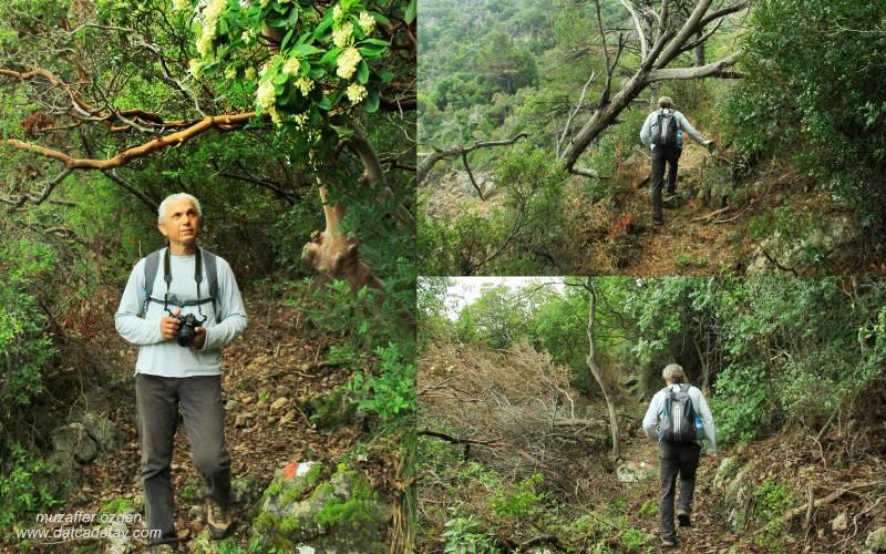 gizemli vadilerde yürüyüş