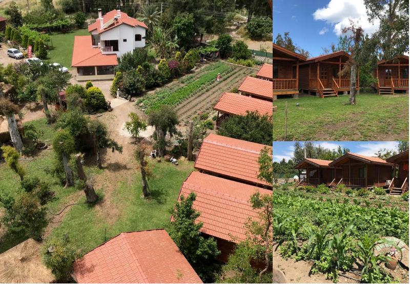 derinbahçe bungalow