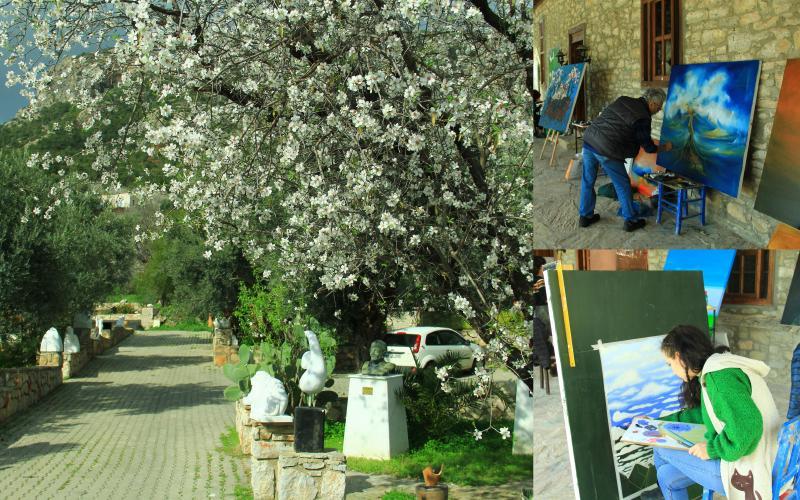 knidos akademi'de badem çiçekleri konulu çalıştay