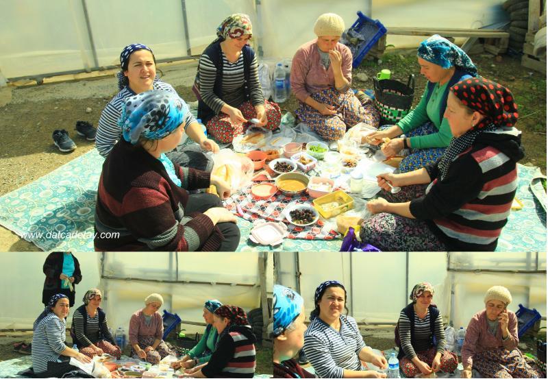 datça'da çalışan kadınlar