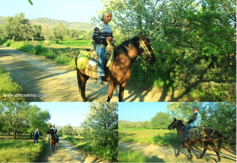 atın üzerinde fotoğraf çektirmek
