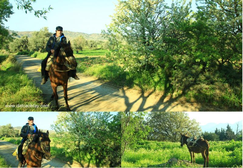 muzaffer özgen atın üzerinde