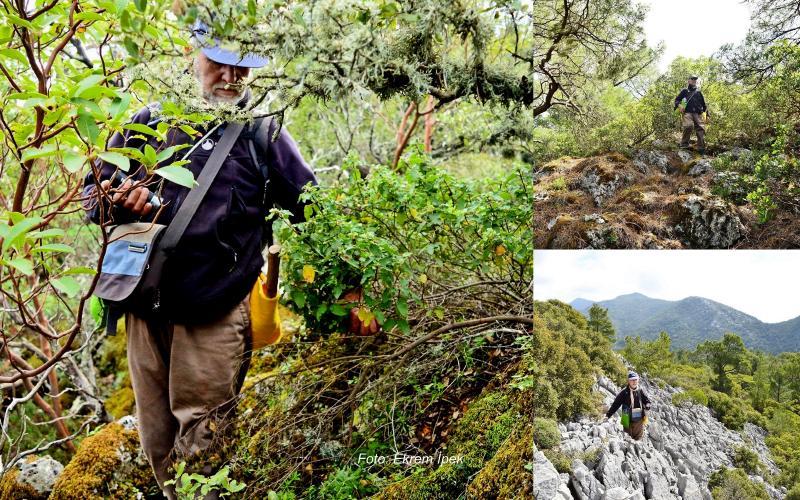 sındı prmanlarında trekking